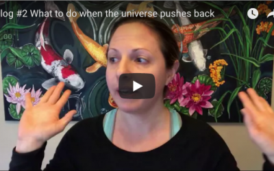 Vlog #2 What to do when the universe pushes back